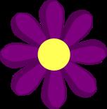 Spring-#2